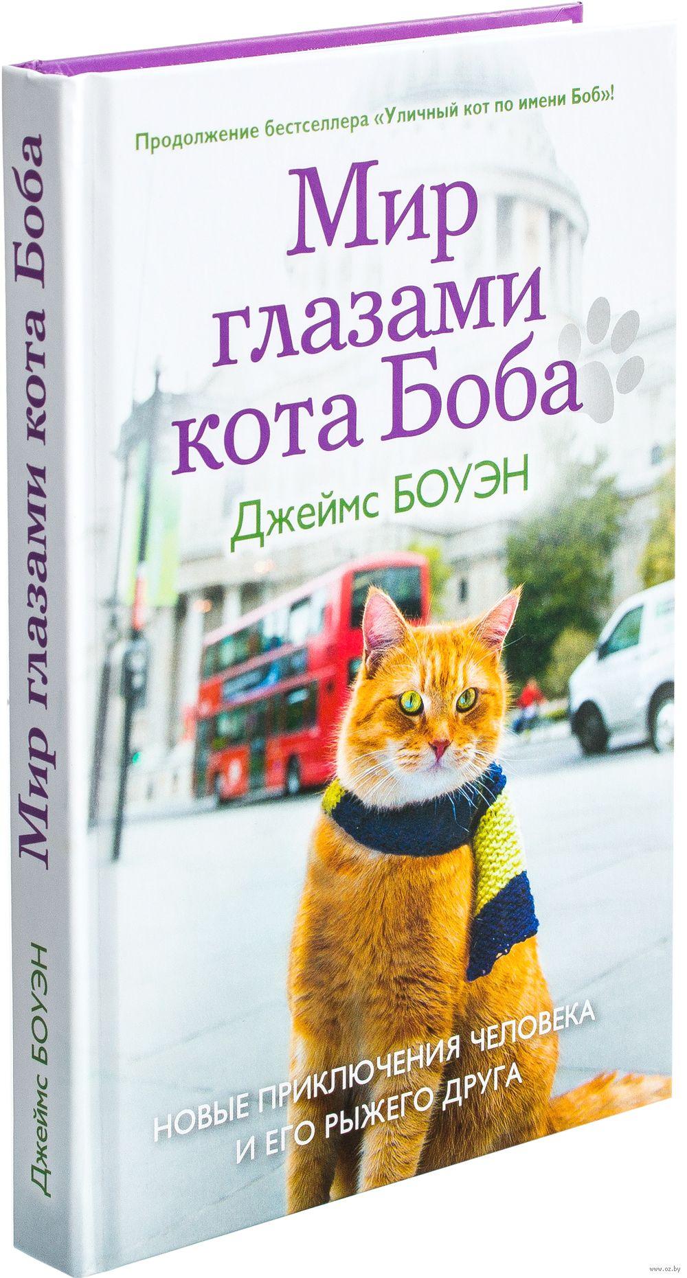 Скачать бесплатно книгу подарок от кота боба