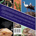 Наши любимые животные (комплект из 2-х книг) — фото, картинка — 2
