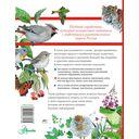 Большой определитель зверей, амфибий, рептилий, птиц, насекомых и растений России — фото, картинка — 16