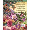 Таинственный сад — фото, картинка — 16