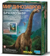 "Набор палеонтолога ""Скелет Брахиозавра"""