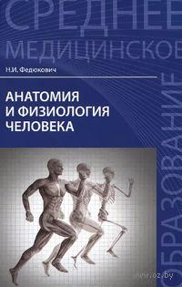 Анатомия и физиология человека. Николай Федюкович, Игорь  Гайнутдинов
