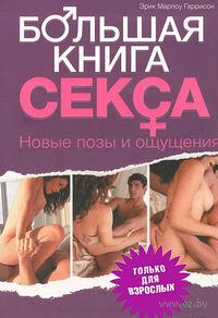 Большая книга секса. Новые позы и ощущения