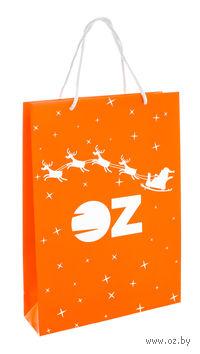 """Пакет подарочный бумажный """"Дед Мороз приносит радость"""" (22х31,5х8 см)"""