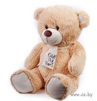 """Мягкая игрушка """"Медведь Тишка"""" (30 см)"""