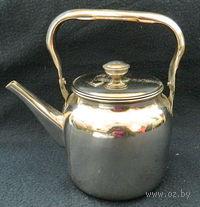 Чайник металлический (1 л, арт. 68802)