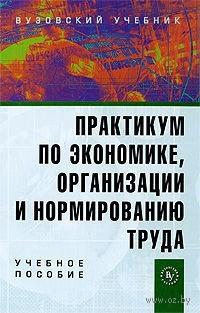 Практикум по экономике, организации и нормированию труда. Павел Шлендер, Марина Смирнова, В. Пуляшкин