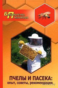 Пчелы и пасека. А. Суворин