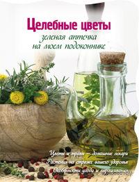 Целебные цветы. Зеленая аптечка на моем подоконнике. М. Васильев