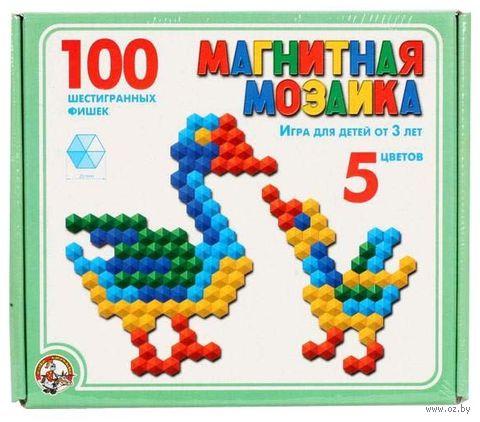 Мозаика магнитная (100 элементов)