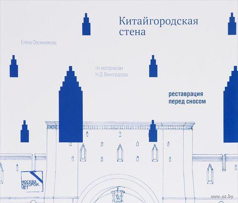 Китайгородская стена. Реставрация перед сносом. Елена Овсянникова
