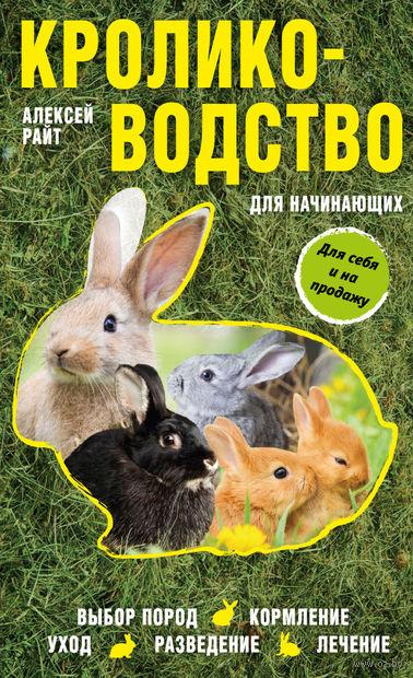 Кролиководство для начинающих — фото, картинка