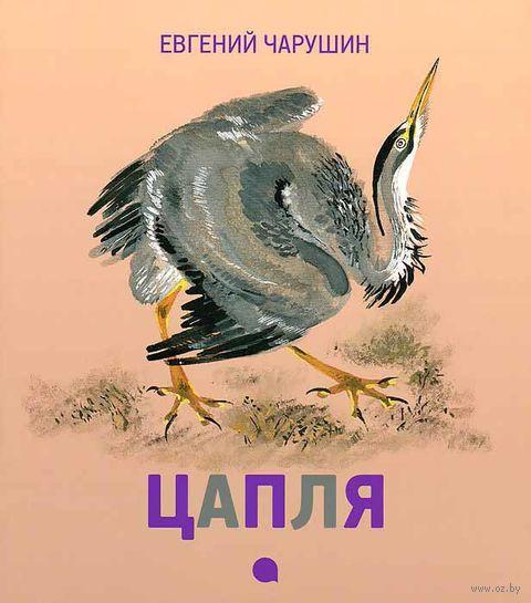 Цапля. Евгений Чарушин