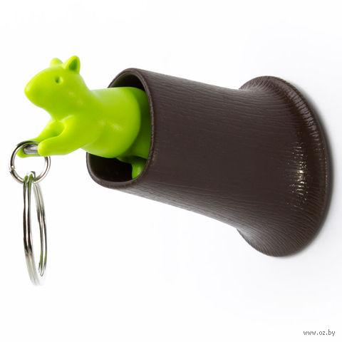 """Брелок и держатель для ключа """"Squirrel"""" (коричневый/зеленый)"""