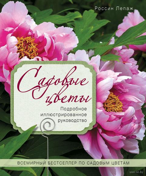 Садовые цветы. Подробное иллюстрированное руководство — фото, картинка
