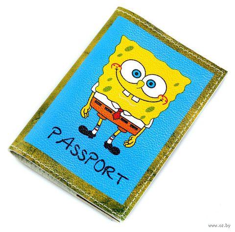 Обложка на паспорт (арт. C1-17-458) — фото, картинка