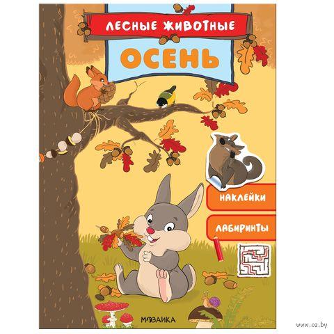 Лесные животные. Осень — фото, картинка
