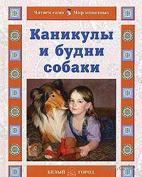 Каникулы и будни собаки. Наталия Ермильченко