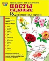 Цветы садовые (16 демонстрационных картинок). Татьяна Цветкова