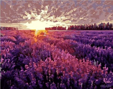 "Картина по номерам ""Закат над лавандовым полем"" (500х650 мм) — фото, картинка"
