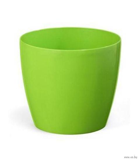 """Кашпо """"Magnolia"""" (12 см; зеленое) — фото, картинка"""