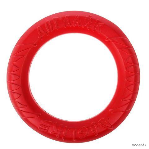 """Игрушка для собак """"Кольцо 8-мигранное"""" (30,5 см) — фото, картинка"""