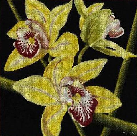 "Вышивка крестом ""Орхидеи Цимбидиум"""