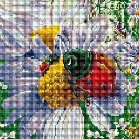 """Алмазная вышивка-мозаика """"Летняя жизнь"""" (300х300 мм) — фото, картинка"""