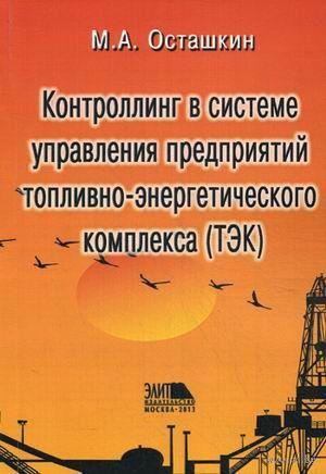 Контроллинг в системе управления предприятий топливно-энергетического комплекса (ТЭК). М. Осташкин