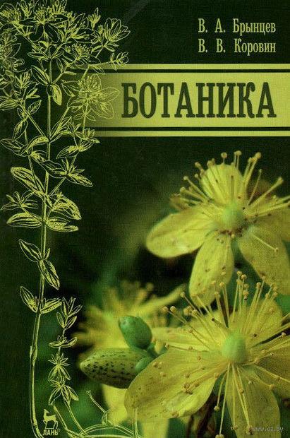 Ботаника — фото, картинка