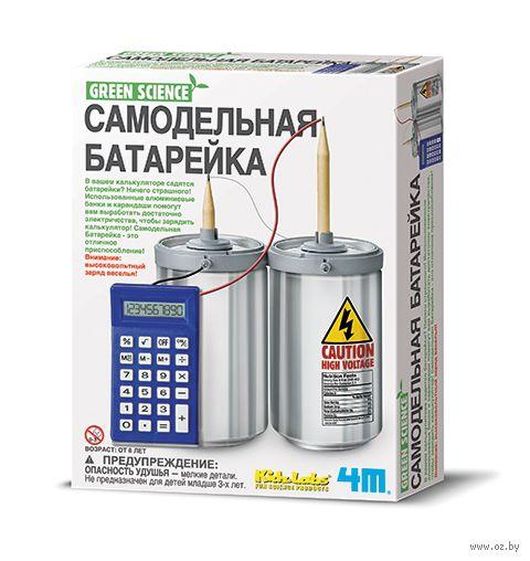 """Набор для опытов """"Самодельная батарейка"""""""