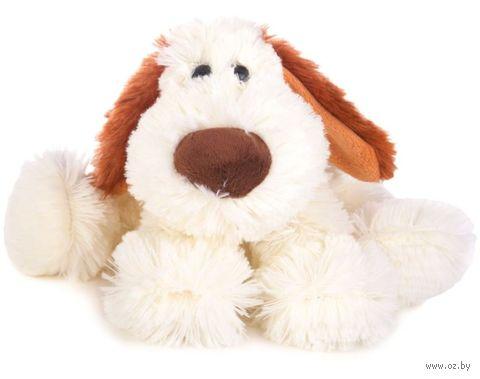 """Мягкая игрушка """"Собака Бася"""" (27 см; белая) — фото, картинка"""