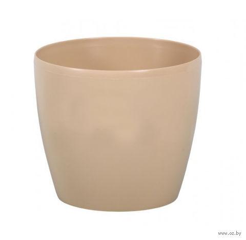 "Кашпо ""Magnolia"" (15,5 см; капучино) — фото, картинка"