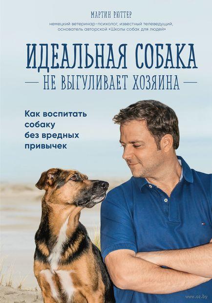 Идеальная собака не выгуливает хозяина — фото, картинка