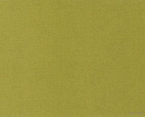 Паспарту (21x30 см; арт. ПУ2853) — фото, картинка