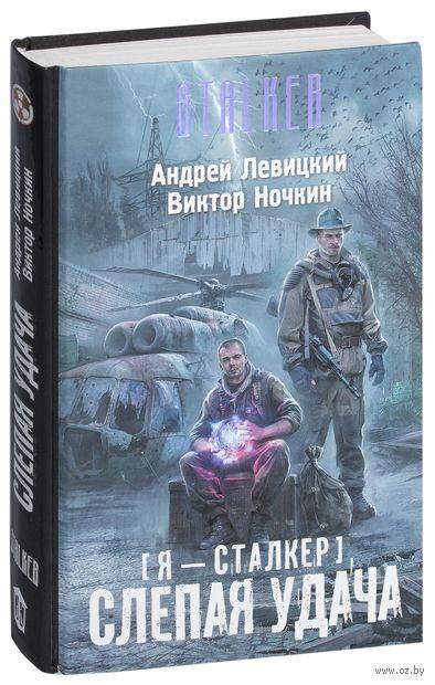 Слепая удача. Андрей Левицкий, Виктор Ночкин