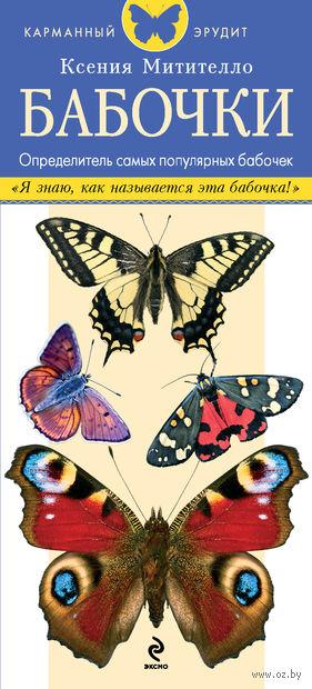 Бабочки. Определитель самых популярных бабочек. Ксения Митителло