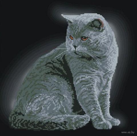 """Вышивка крестом """"Британская короткошерстная кошка"""""""