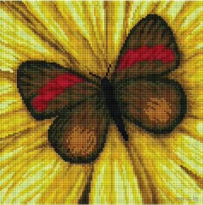 "Алмазная вышивка-мозаика ""Бабочка"" (300х300 мм) — фото, картинка"