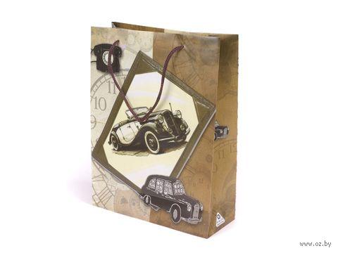 """Пакет пластмассовый подарочный """"Автомобиль"""" (17х13х5 см) — фото, картинка"""