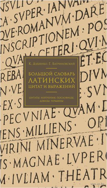 Большой словарь латинских цитат и выражений — фото, картинка