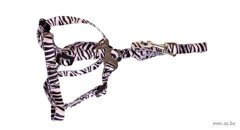 Шлея (30-50 см; поводок 1,2 м) — фото, картинка