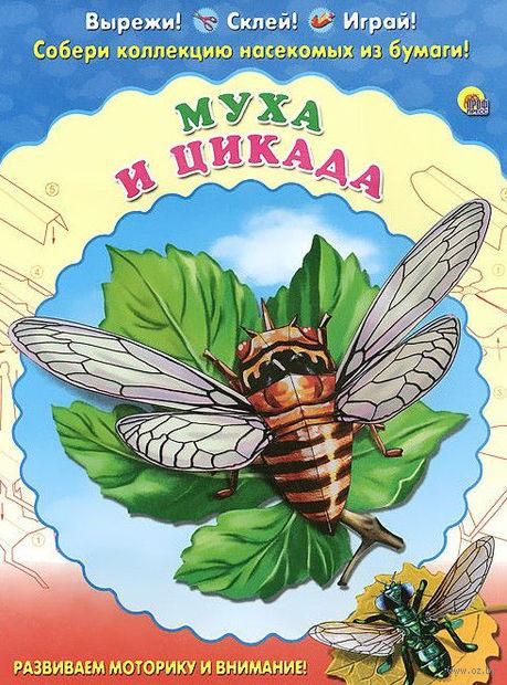 Муха и цикада. Набор для детского творчества — фото, картинка