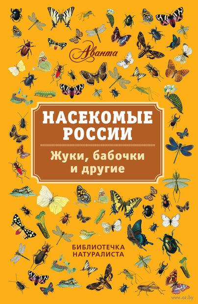 Насекомые России. Жуки, бабочки и другие.. В. Горбатовский