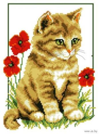 "Вышивка крестом ""Котенок и маки"" (210x300 мм) — фото, картинка"