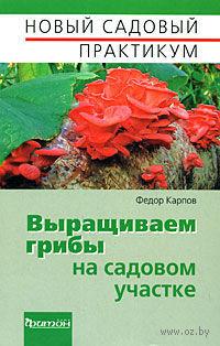 Выращиваем грибы на садовом участке. Федор Карпов
