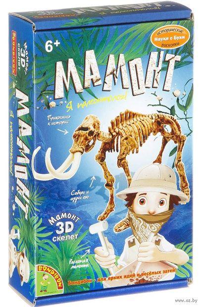 "Набор палеонтолога ""Мамонт"" — фото, картинка"