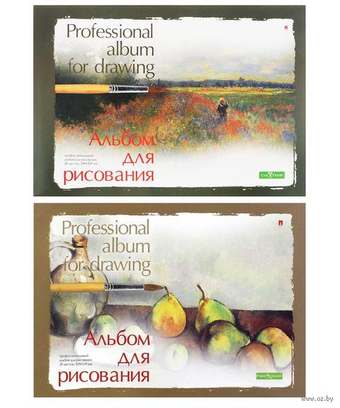 """Альбом для рисования """"Профессиональный"""" (А5; 20 листов; в ассортименте) — фото, картинка"""