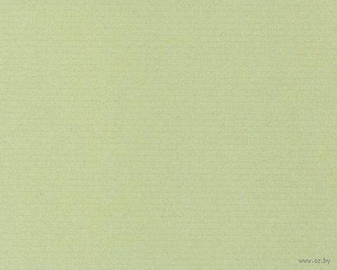 Паспарту (21x30 см; арт. ПУ2489) — фото, картинка