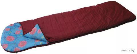 Спальник с подголовником 2-слойный СП-2 (ассорти)